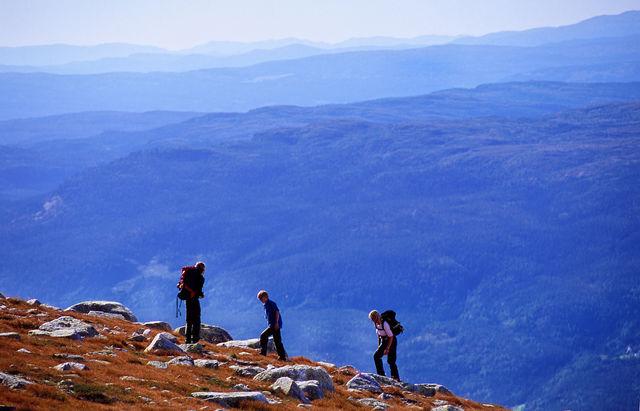 Wandelaars berg Geilo Hogevarde Noorwegen
