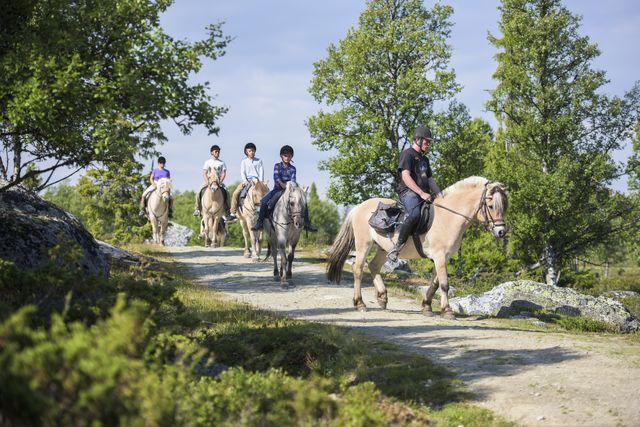 Paardrijden Geilo Noorwegen