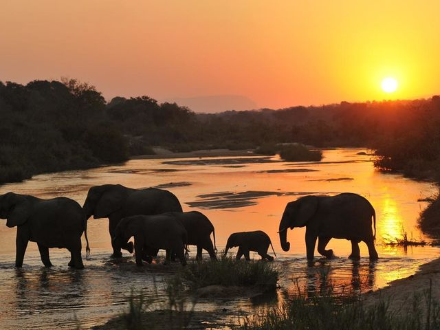 Rondreis Zuid-Afrika Sabi Sands