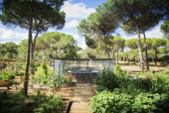 Luxe rondreis van Porto naar Algarve - Portugal | AmbianceTravel