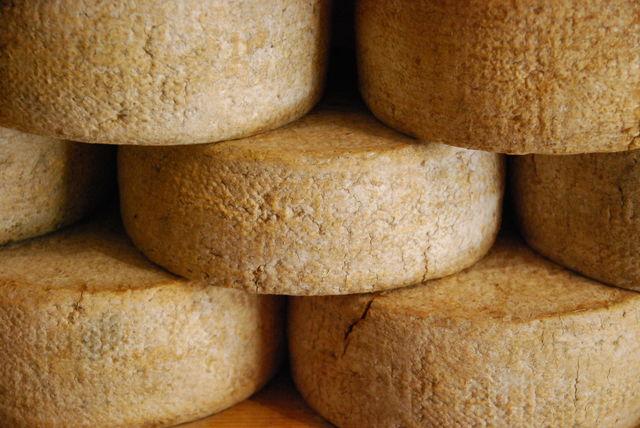 Rondreis Italië Slowfood Kazen