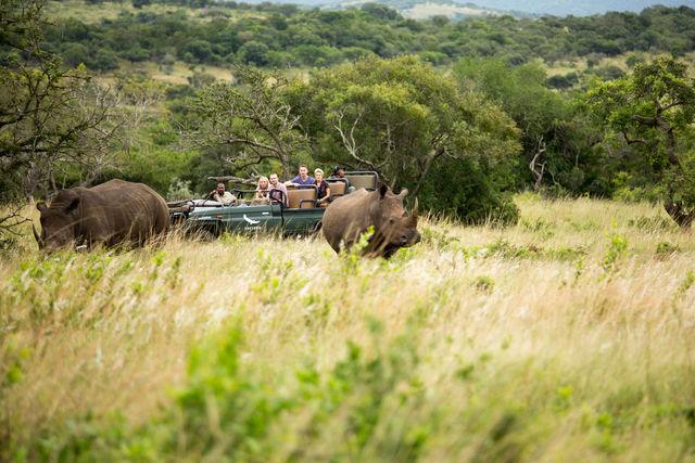 Rondreis Zuid-Afrika Kruger Park