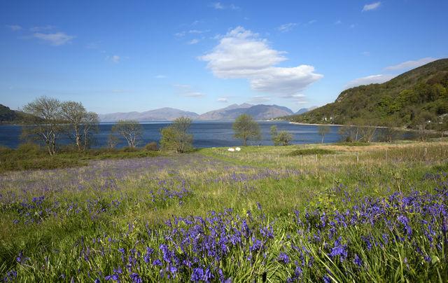 Schotland hooglanden