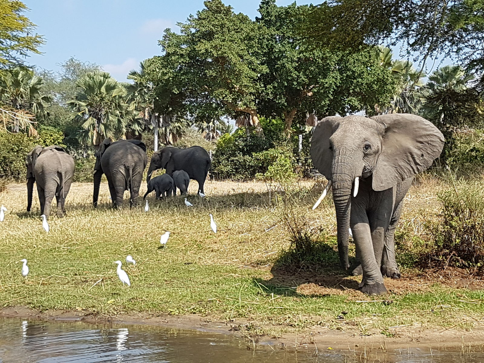 Beste reistijd voor Malawi | AmbianceTravel