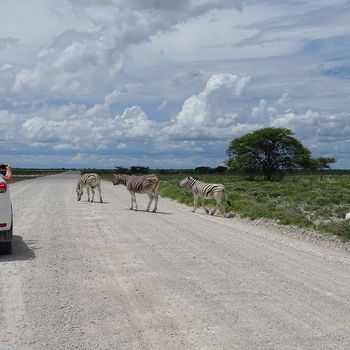 Individuele rondreis door Namibië | AmbianceTravel