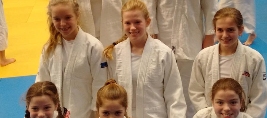 Judo team sm