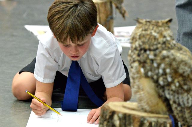 The Raptor Foundation's birds of prey make wonderful artists models