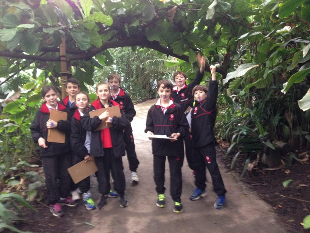 Chafyn Grove at the Eden Project