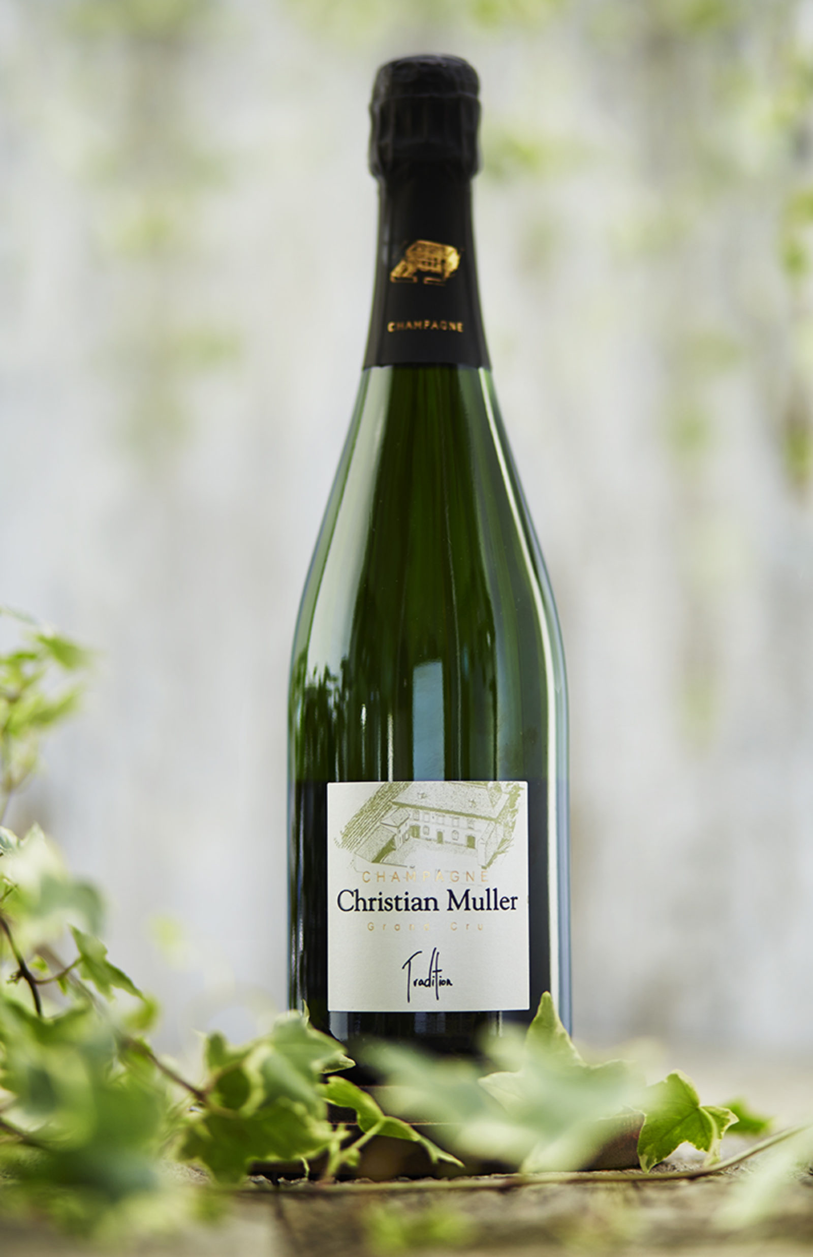Champagne Grand Cru - Tradition