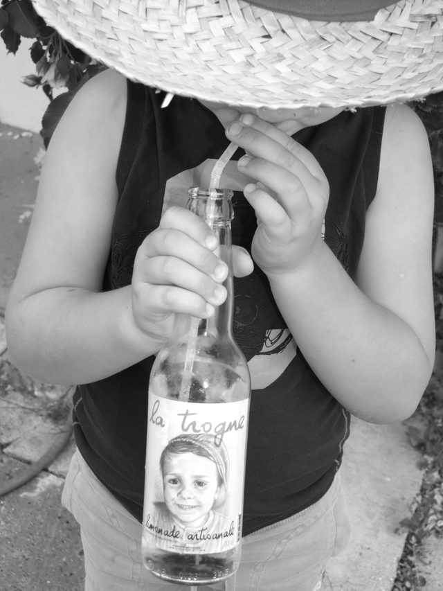 Limonade Artisanale La trogne 75 cl