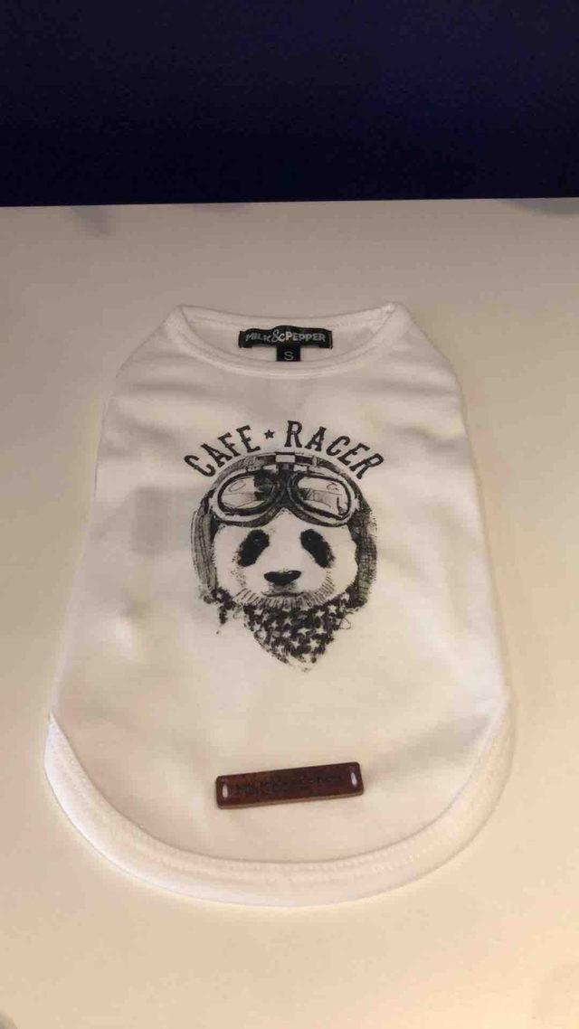 T Shirt Blanc Imprimé Panda