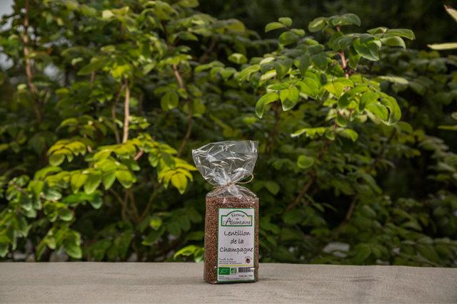 Lentillons Champenois Biologique - 500g