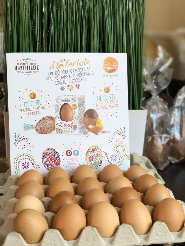 Œuf praliné dans sa véritable coquille d'œuf