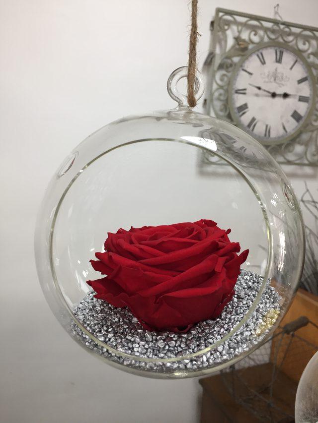 Boule en verre suspendue avec une rose éternelle Rouge