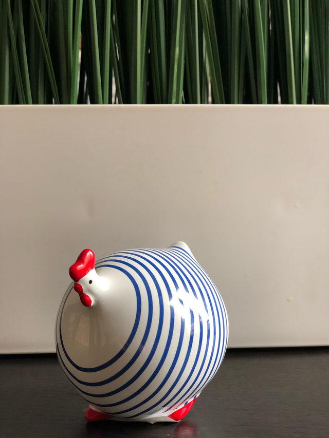 Petite poule ronde à rayures bleues et blanches