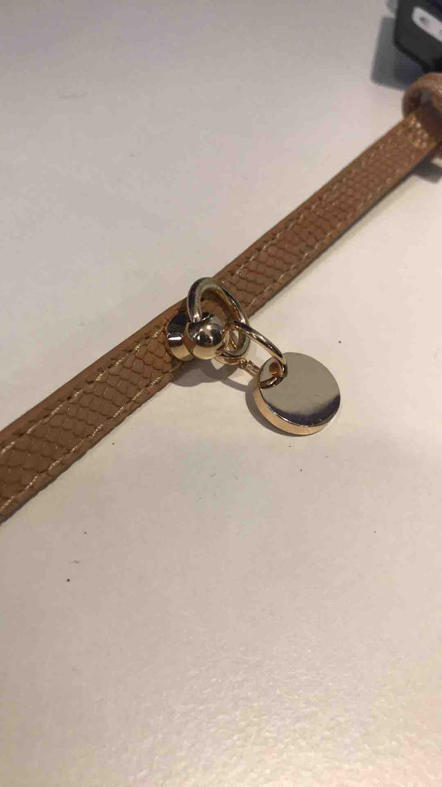 collier Camel