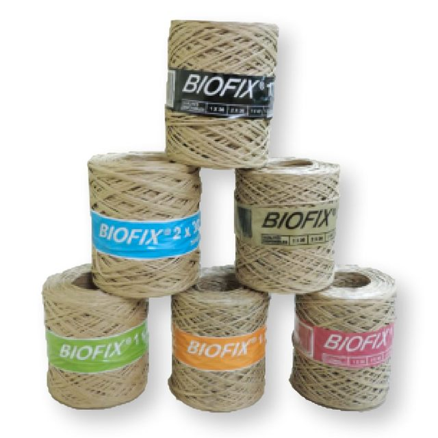 Ficelle lien armée - Biofix