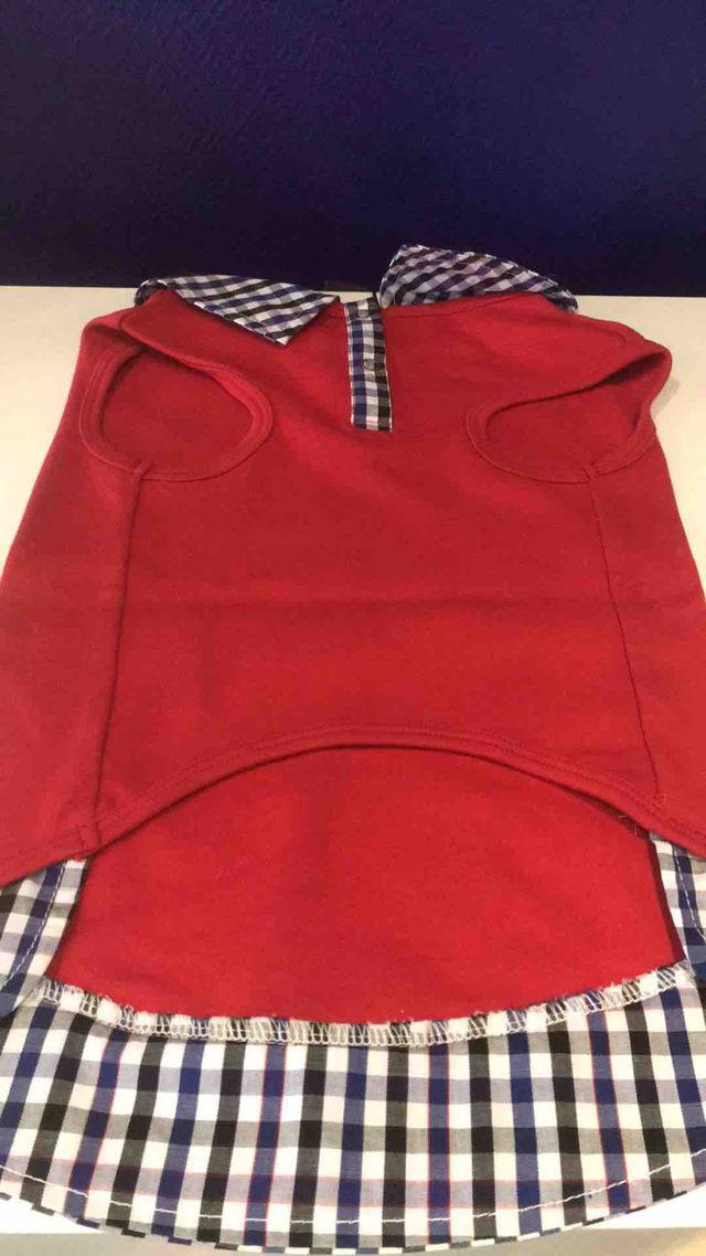 Polo Rouge à Carreaux Bleus
