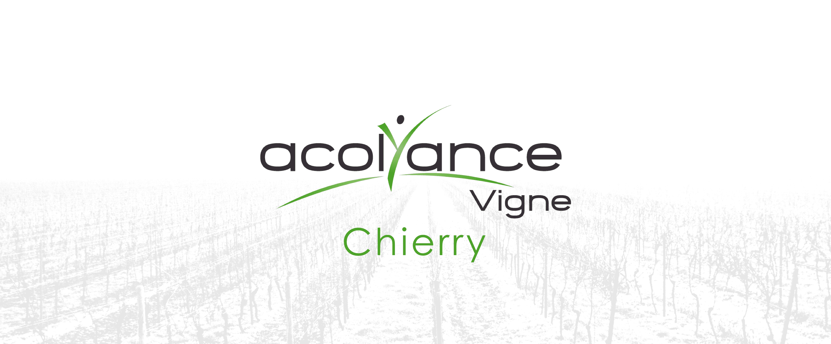 Acolyance Vigne Chierry
