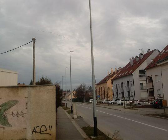 ždral  - Darko Podravec