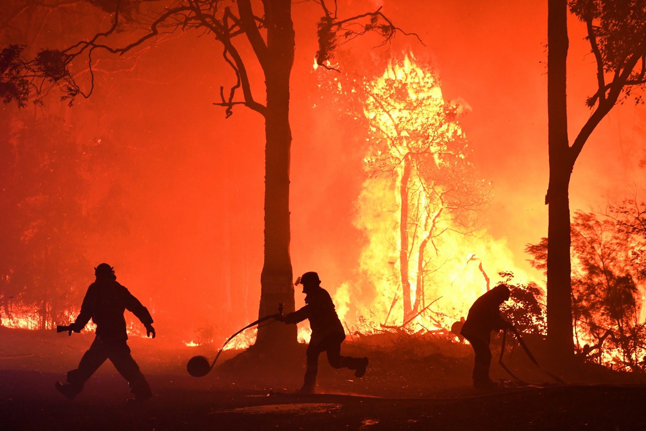 Volunteers and Fire Rescue officers fight a bushfire