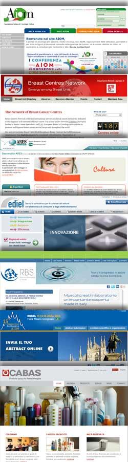 Alcuni siti sviluppati: AIOM, Breast Centres Network, Ares BPM, Ediel, RBS, Congresso AIOM, CABAS