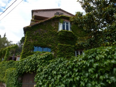 French property, houses and homes for sale in VILLENEUVE MINERVOIS Aude Languedoc_Roussillon