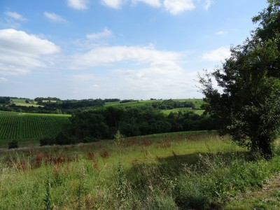 French property, houses and homes for sale in VILLENAVE DE RIONSGironde Aquitaine