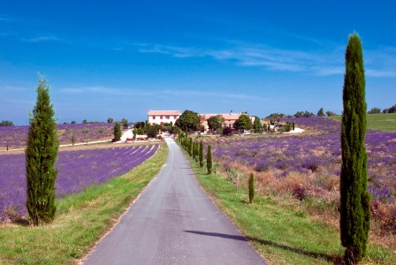 French property, houses and homes for sale in ST JURS Alpes_de_Hautes_Provence Provence_Cote_d_Azur
