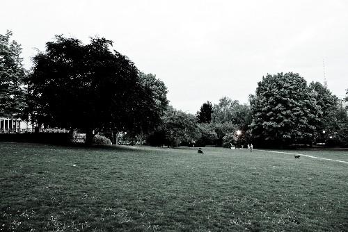 Weinbergspark