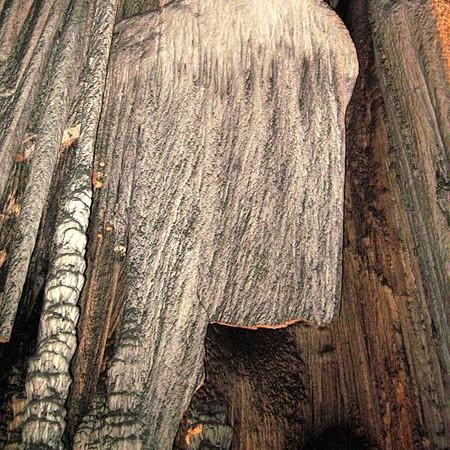 Die Höhlen von Artá