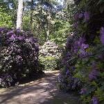De Waldfriedhoff