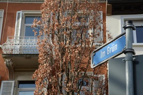 Heart of the City – Ferienwohnungen im Innenstadtring