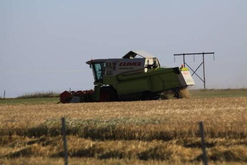 Landwirtschaft Teil 2