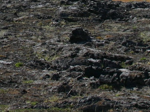 Lavafeld Reykjahlíð