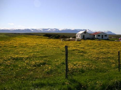 Halbinsel Tjörnes