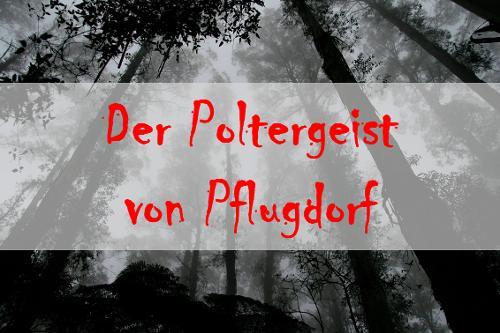 Der Poltergeist von Pflugdorf