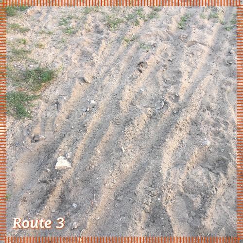 Route 3   Sand in Hülle und Fülle