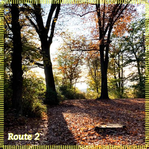 Route 2 | Ausritt Richtung Park