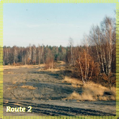 Route 2   Wühlen im Sand
