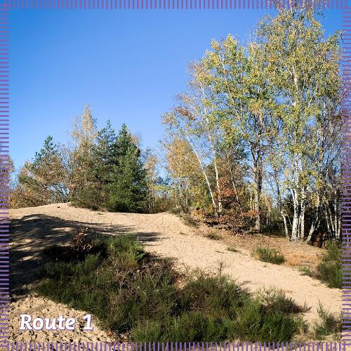 Route 1 | Mitten durch einen einzigartigen Lebensraum