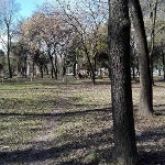 Temeswarer Parks