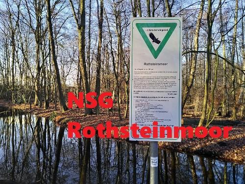 Naturschutzgebiet Rothsteinmoor (HH)
