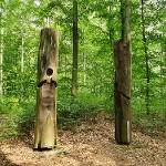 Unterwegs im Sauener Wald