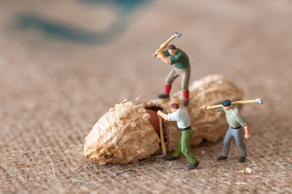 toy figures cracking peanut