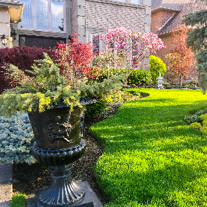 Gran calidad-Jardines Verticales de Colombia sas