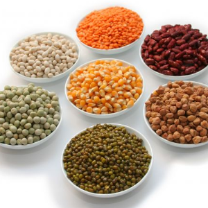 Calidad en los productos-Suministros y Alimentos Pasma