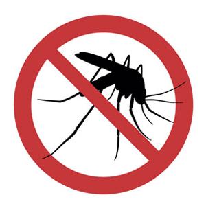 Rápida atención-DMR Control de Plagas