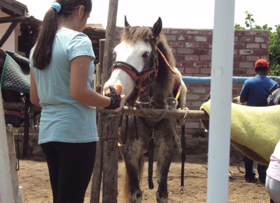 Equitación en Chorrillos