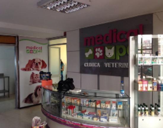 Veterinario en Antofagasta